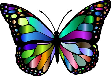 clipart butterfly clip of monarch butterfly 101 clip