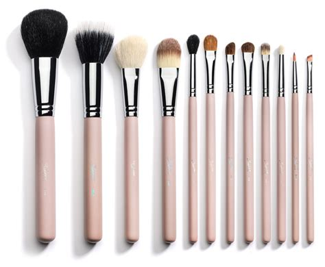 Set Kuas Makeup Murah Blush On Eyeshadow the puppy ate my makeup brushes jen nelson