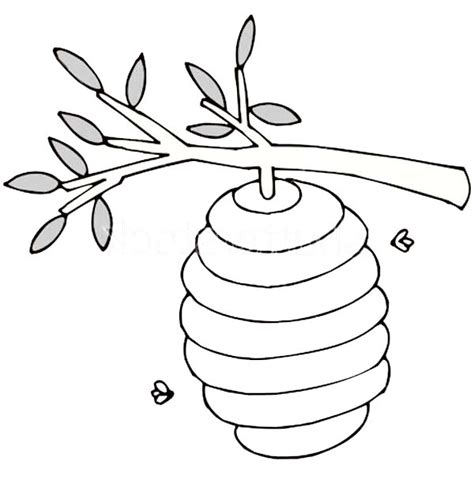coloring page of tree branches tree branches printable coloring pages