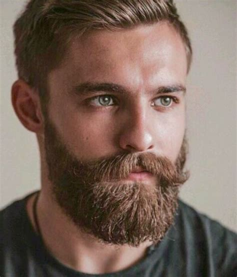 Great Hairstyle With Goatee | daily dose of awesome beard styles from beardoholic com