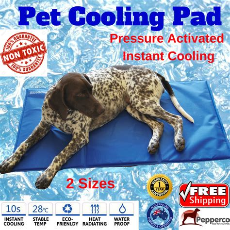 cooling beds for dogs non toxic dog toys australia noten animals