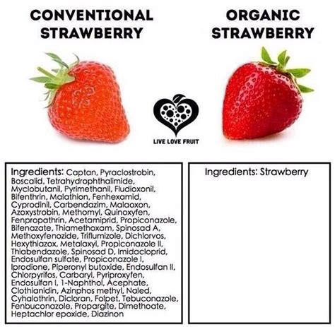 7 Things To About Organic by Organic Vs Non Organic Info Temples