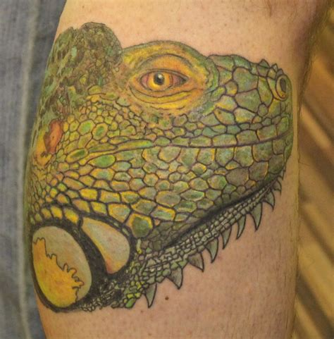 chameleon tattoos chameleon best design ideas