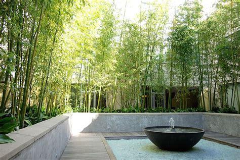 bamboo courtyard water feature decking garden outdoor living pinterest backyards
