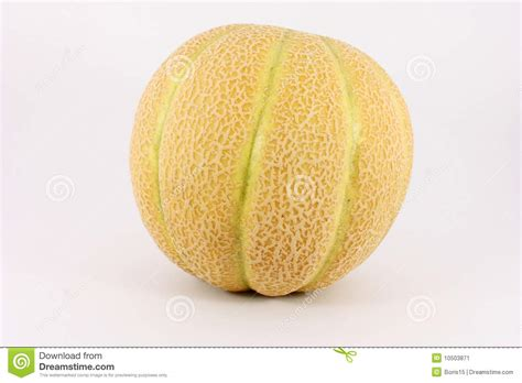 Melon Sweet sweet baby melon stock image image 10503871