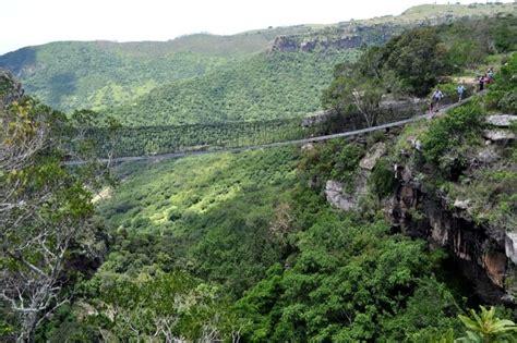 oribi gorge swing 20 scariest bridges around the world