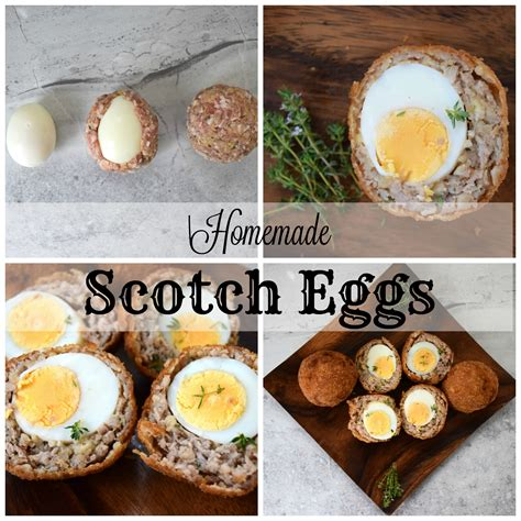 Handmade Scotch Eggs - handmade scotch eggs 28 images scotch egg recipe