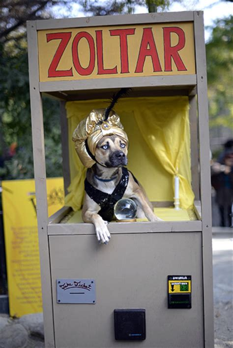 Zoltar A Novelty That Tells Your Fortune And Costs A Small Fortune by A Dressed As A Zoltar Fortune Telling Machine At The
