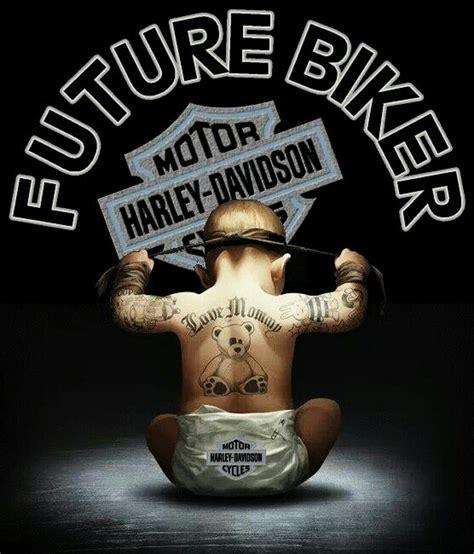 Harley Davidson Meme - harley davidson harley davidson pinterest harley