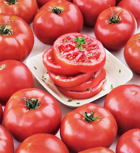 Urban Organic Gardening - solar fire tomato heat and resistant great flavor