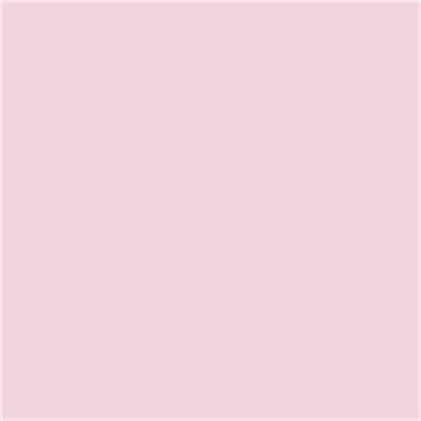 25 best pink paint colors ideas on