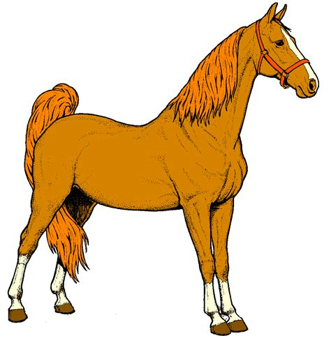 Horses Clip clipart amazing wallpapers