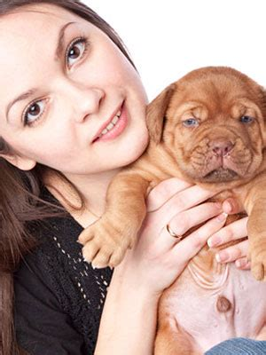 housebreaking a puppy in 5 days pet care tips housebreaking a puppy at womansdaycom womans day breeds picture