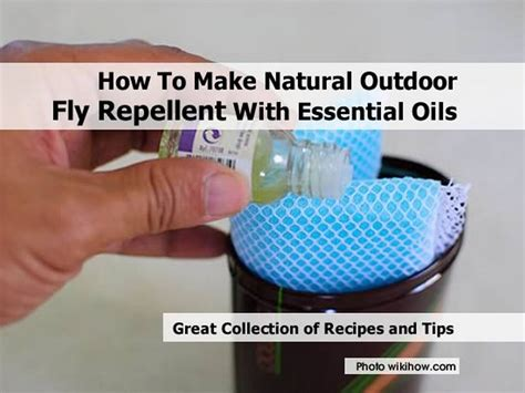 backyard fly repellent how to make natural outdoor fly repellent with essential oils