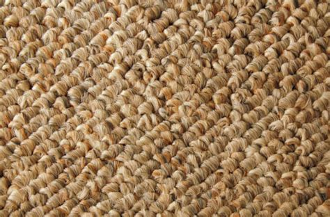 can you steam clean a wool rug can you steam clean wool berber carpet carpet review