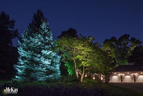 tree landscape lighting landscape lighting trees