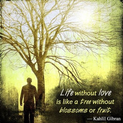 famous quotes  kahlil gibran  touch