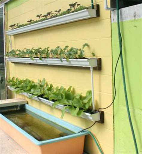 diy rain gutter aquaponic system  grid world