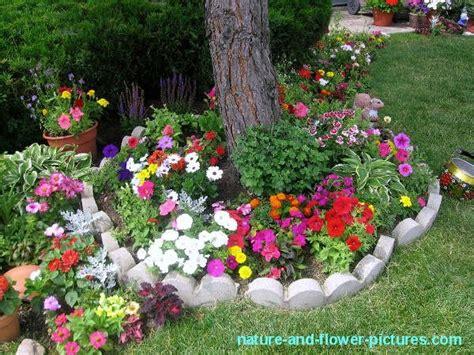 Pinterest Flower Garden Ideas Flower Gardens Search Flower Garden Ideas Pinterest