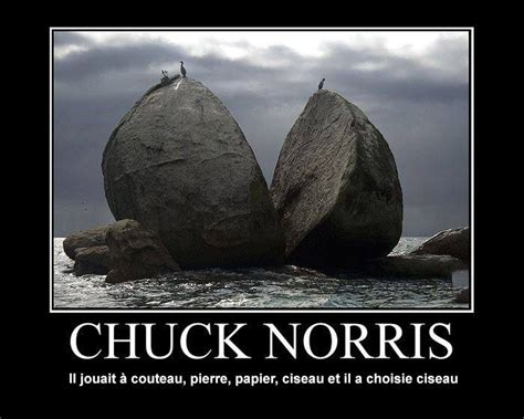 chuck norris best facts best 25 chuck norris facts ideas on