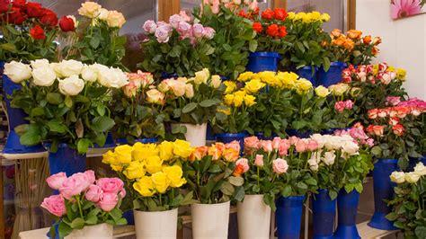 vendita fiori vendita fiori stratfordseattle