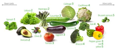 vegetables only diet a few asking for low carb food lists page 2