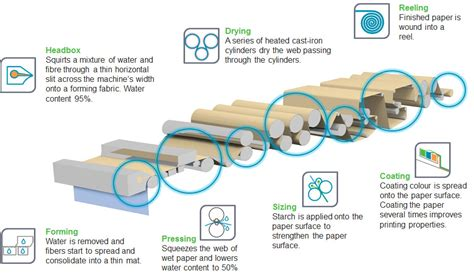 The Process Of Paper - paper process
