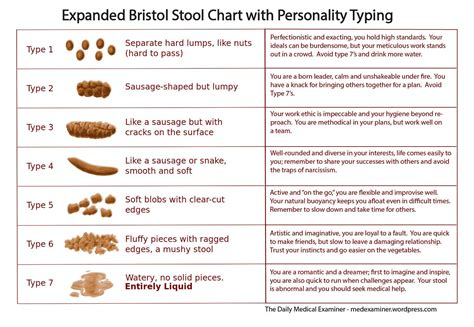 Human Stool Analysis by Doo And You What The Bristol Stool Chart Tells Us About