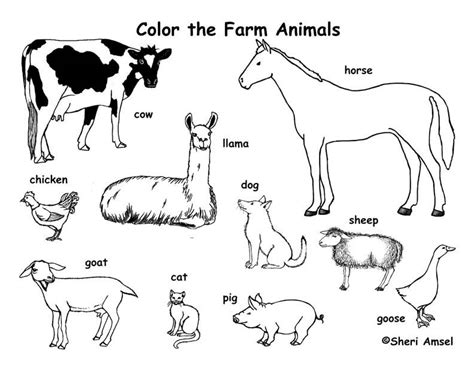 animal coloring pages pdf farm animals coloring page