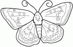 borboleta linda desenhos colorir