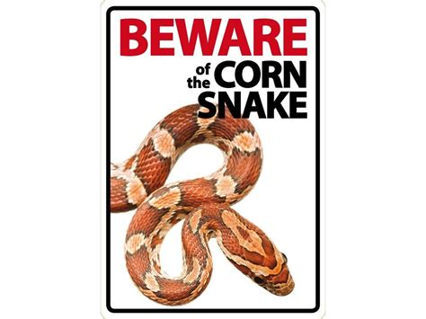beware of the beware of the corn snake sign livefood uk ltd