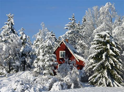 christmas in sweden photo free desktop background wallpapers winter nature wallpapers