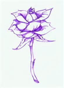 purple rose by repip on deviantart