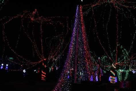Columbus Zoo Wildlights Ohio Girl Travels Columbus Zoo Lights 2014