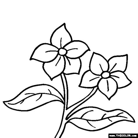 small flower coloring pages simple small flower coloring