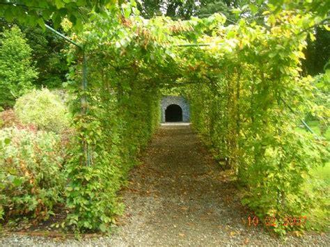 Ashford Gardens by Walled Garden At Ashford Castle Picture Of Ireland