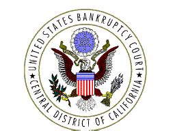 Los Angeles Bankruptcy Court Search Cm Ecf U S Bankruptcy Court V5 2 1 Live