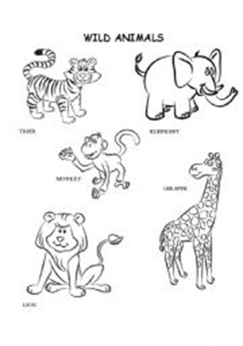 wild animals coloring pages preschool 14 best images of wild animals worksheets preschool