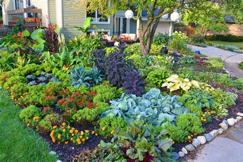 flowers for vegetable gardens 38 homes that turned their front lawns into beautiful