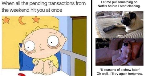 memes  perfectly sum  college life funny