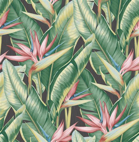 bananas leaf wallpaper arcadia pink banana leaf wallpaper tropical wallpaper