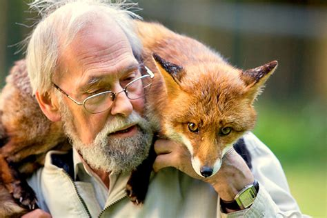 the man red fox 009910881x man rescues fox becomes its best friend