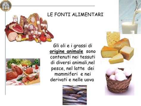 lipidi alimenti pricipali classi di lipidi e fonti alimentari