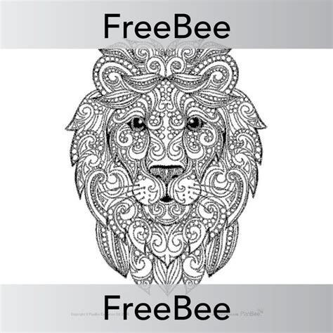 coloring sheets mindfulness colouring sheets animals freebees