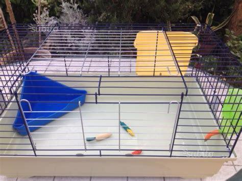 gabbia per topi gabbia per topi o criceti nuova posot class