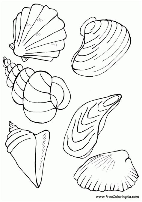 seashell color seashell printable coloring pages coloring home