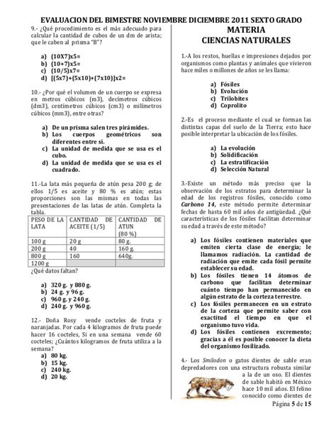 examen bimestral sexto grado apexwallpaperscom examen bimestral sexto grado bimestre ii noviembre diciembre
