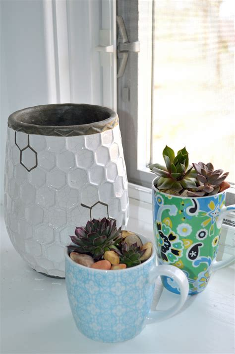 Teacup Planter by Make Succulent Planters Out Of Chipped Teacups
