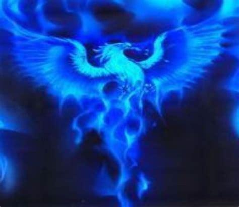 wallpaper blue phoenix atrobuet phoenix images blue phoenix hd wallpaper and