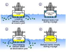 sailboat meaning in tamil sailing ballast wikipedia